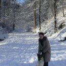 las_zima